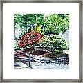 Rhododendrons In The Yard Framed Print