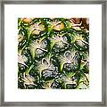 Ripe And Green Framed Print
