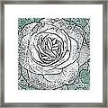 Ritzy Rose With Ink And Green Background Framed Print