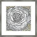 Ritzy Rose With Ink And Taupe Background Framed Print