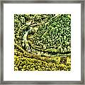 River Bend Framed Print
