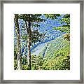 River Thru The Trees Framed Print
