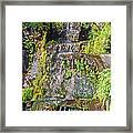 Roadside Waterfall. Mount Rainier National Park Framed Print