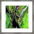 Rock Art 20 Framed Print