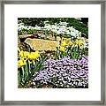 Rock Garden Flowers Framed Print
