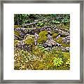 Rocks And Moss II Framed Print
