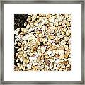 Rocks And Mulch Framed Print