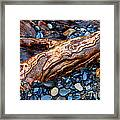 Rocks And Roots Framed Print