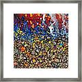 Rocks Splattered With Paint Framed Print by Amy Cicconi