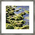 Rocky Green Framed Print by Kenneth Feliciano