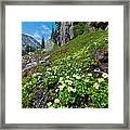 Rocky Mountain Summer Landscape Framed Print