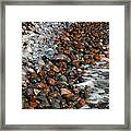 Rocky Shoreline Abstract Framed Print