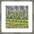 Roll In The Hay Framed Print by Sarah E Kohara