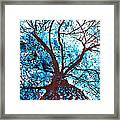 Roots To Branches II Framed Print