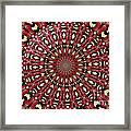 Roses Kaleidoscope Under Glass 21 Framed Print