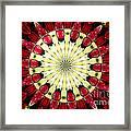 Roses Kaleidoscope Under Glass 23 Framed Print