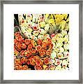 Roses 01 Framed Print