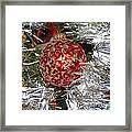 Ruby Red Ornament Framed Print