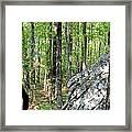 Rugged Terrain Of Boulder Field Framed Print