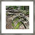 Running Out Of Ground Framed Print