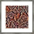 Rusted Bolt In The Rocks Framed Print