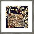Rusted Lock Framed Print by Troy Lewis