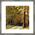 Rustic Road Framed Print