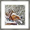 Rusty Dog Love Framed Print