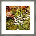 Rusty Gold Framed Print
