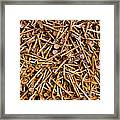 Rusty Nails Abstract Art Framed Print