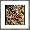 Rusty Nails Framed Print