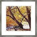 Sacred Place Framed Print