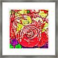 Sacred Roses Framed Print
