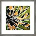 Saint Papilio Polyxenes Study Framed Print
