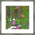 Sala Tree And Orchids At Buddhist University In Chiang Mai-thail Framed Print