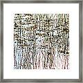 Sawgrass Swamp Panorama Framed Print