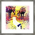 It's Wise To Say Friendly Hello To The Dog, It's A Predator  Framed Print