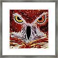 Scarlet Owl Framed Print
