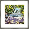 Sea Grape Delight Framed Print