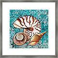 Sea Shells Original Coastal Painting Colorful Nautilus Art By Megan Duncanson Framed Print by Megan Duncanson