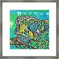 Sea Turtle Sam Framed Print