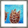 Sea Turtles Swimming Towards The Light Together Framed Print