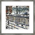 Seagull Lady In The Afternoon Framed Print