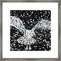 Seagull - Oil Portrait Framed Print