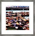 Seal Wharf Framed Print