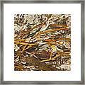 Seaweed Swirls Framed Print