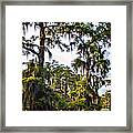 Secluded Retreat Framed Print