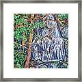 Secluded Waterfall Framed Print