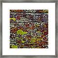 Sedona Carpet Framed Print
