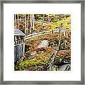 Sentinel Pine Hillside Framed Print